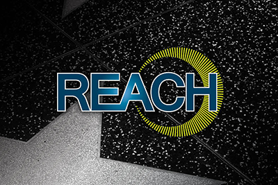 Image of REACH conference logo