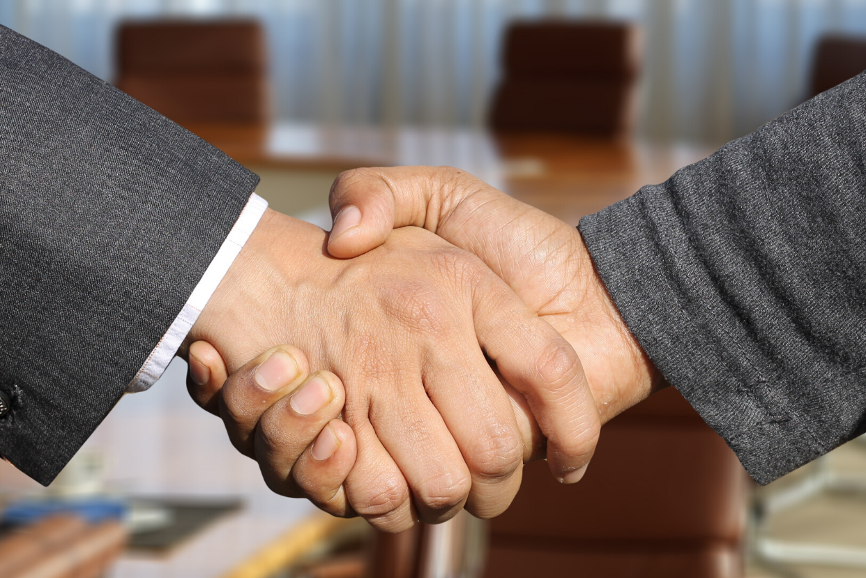 Business professional handshake